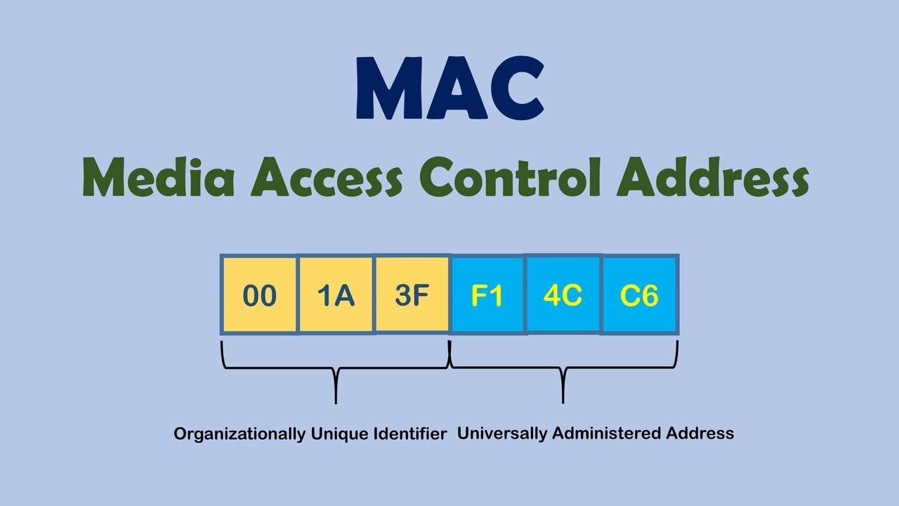 Как узнать MAC адрес компьютера на ПК с Windows и MacOS